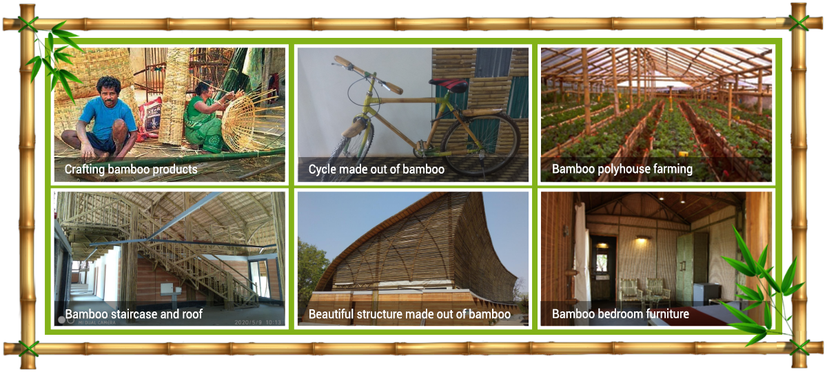 bamboo-products